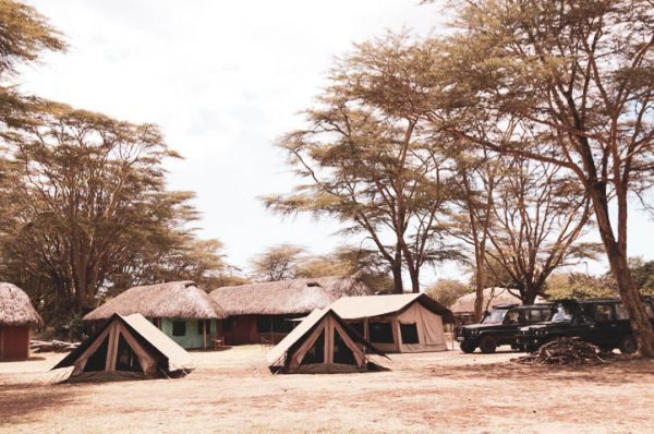 Flycamp setup on Lewa for the Young Conservationist Internship